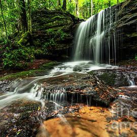 Thomas R Fletcher - Lin Camp Branch Waterfall