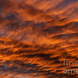 Thomas R Fletcher - Appalachian Afterglow