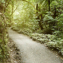 Walking trail - Les Cunliffe