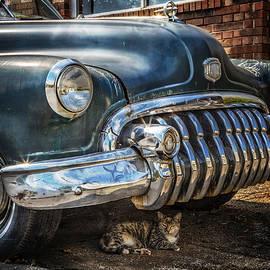 Debra and Dave Vanderlaan - 1950 Buick Dynaflow