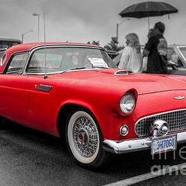 Gene Healy - 1956 Ford Thunderbird