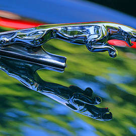 Allen Beatty - 1995 Jaguar X J S Hood Ornament