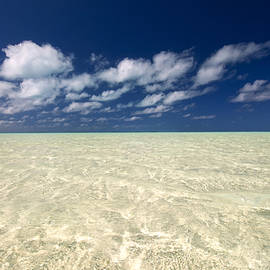 Michael Treloar - Aitutaki - Cook Islands