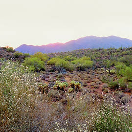 Gordon Beck - Arizona Sunset