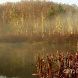 Thomas R Fletcher - Autumn Morning Mist on Lake