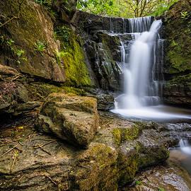 Daniel Kay - Beautiful Flowing Waterfall In The Edenfield Forest.