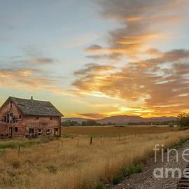 Robert Bales - Beautiful Sunrise