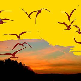 Anand Swaroop Manchiraju - Birds In Flight