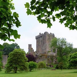 Blarney Castle - Ireland - Joana Kruse