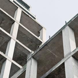 Building construction - Tom Gowanlock