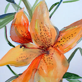 Mindy Newman - Day Lily