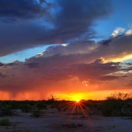 Saija  Lehtonen - Desert Sunshine