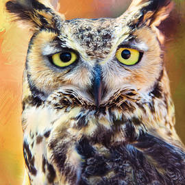 Barbara Manis - Great Horned Owl