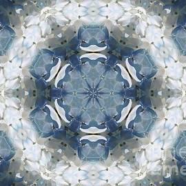 J McCombie - Hydrangea Kaleidoscope