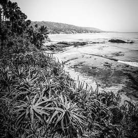 Laguna Beach Black and White Photo - Paul Velgos