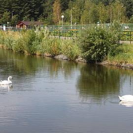 Evgeny Pisarev - Landscape