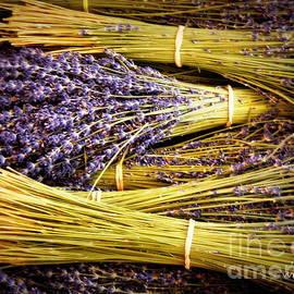 Lainie Wrightson - Lavender Bundles