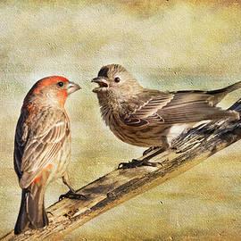 Barbara Manis - 2 Little Love Birds