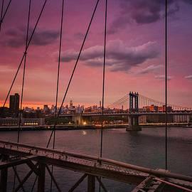 Vivienne Gucwa - New York City - Sunset