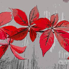 Sebastien Coell - Red leaves
