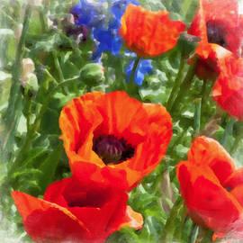 Bonnie Bruno - Red Poppies