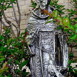 Ed Weidman - St.francis Of Assisi