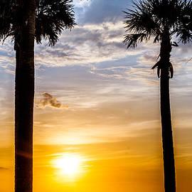 Christopher  Jones  - Sunset