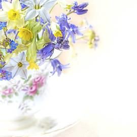 Jacky Parker - Sweet Spring