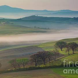 Brian Jannsen - Tuscan Dawn