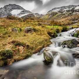Winter Landscape - Adrian Evans