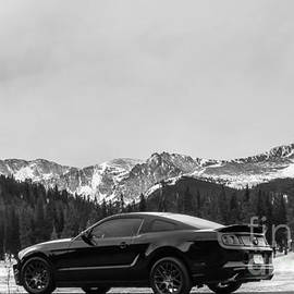 2014 Ford Mustang - Echo Lake Black and White
