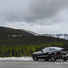 2014 Ford Mustang - Echo Lake
