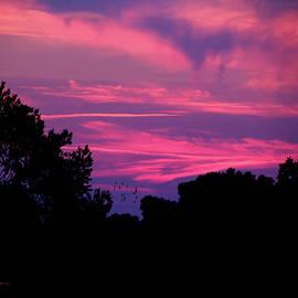 EricaMaxine  Price - 2015-05-02  Sunset