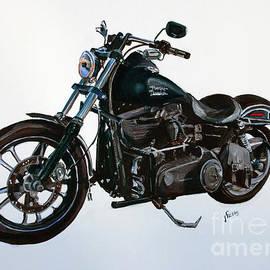 Janet Felts - 2015 Harley Davidson Dyna