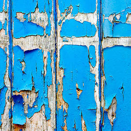 Blue wood - Tom Gowanlock