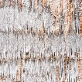 Weathered wood - Tom Gowanlock