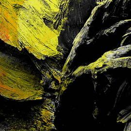 Vinod Madhok - Abstract Photography