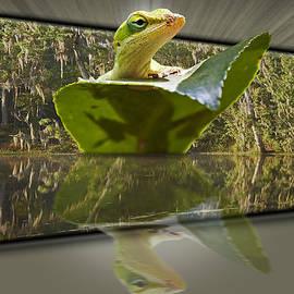 Susan Whitaker - 3-D Reflecting Lizard
