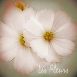 Kathy Franklin - Les Fleurs
