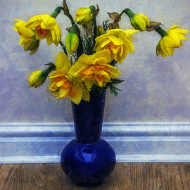 Ian Mitchell - Spring Daffodils