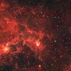 The Dragon Fish Nebula - American School