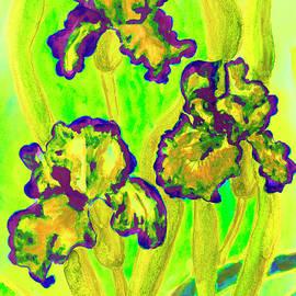 Irina Afonskaya - Three yellow irises, watercolor