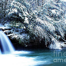 Thomas R Fletcher - West Virginia Waterfall