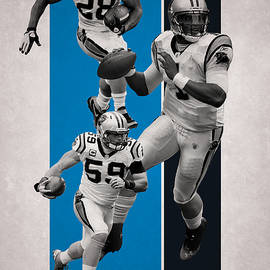 CAROLINA PANTHERS - Joe Hamilton