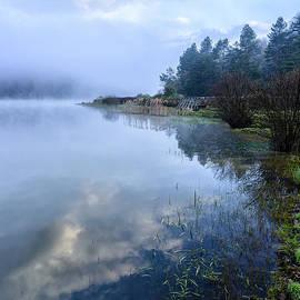 Thomas R Fletcher - Misty Spring Morning