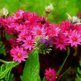 Bruce Nutting - Wild Flowers