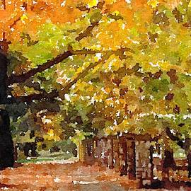 JS Stewart - Rountree In The Fall