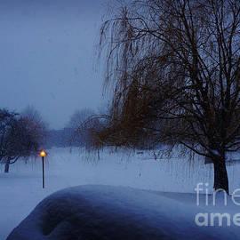 Adam Asar - Winter Landscape