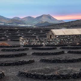 La Geria - Lanzarote - Joana Kruse