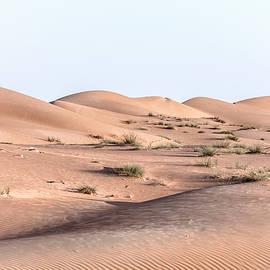 Wahiba Sands - Oman - Joana Kruse